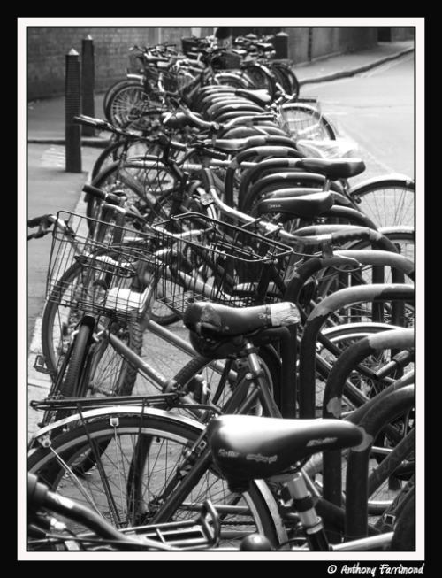 Bikes [framed]
